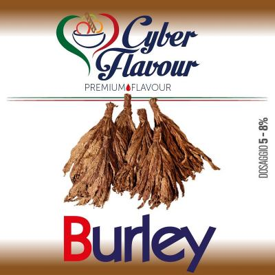 Aroma Concentrato Burley Cyber Flavour 10 ml